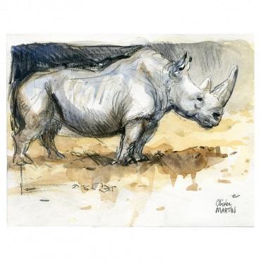 Rhino par Olivier Martin