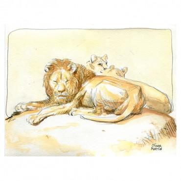 Lion par Olivier Martin
