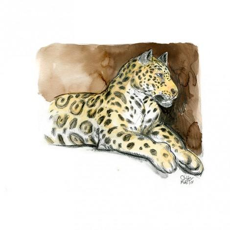 Jaguar par Olivier Martin
