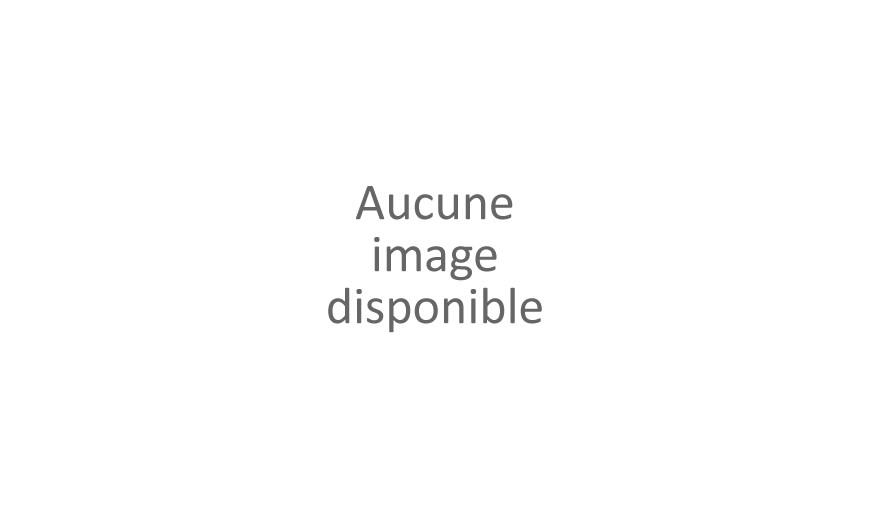 Bonnefoit, Alain